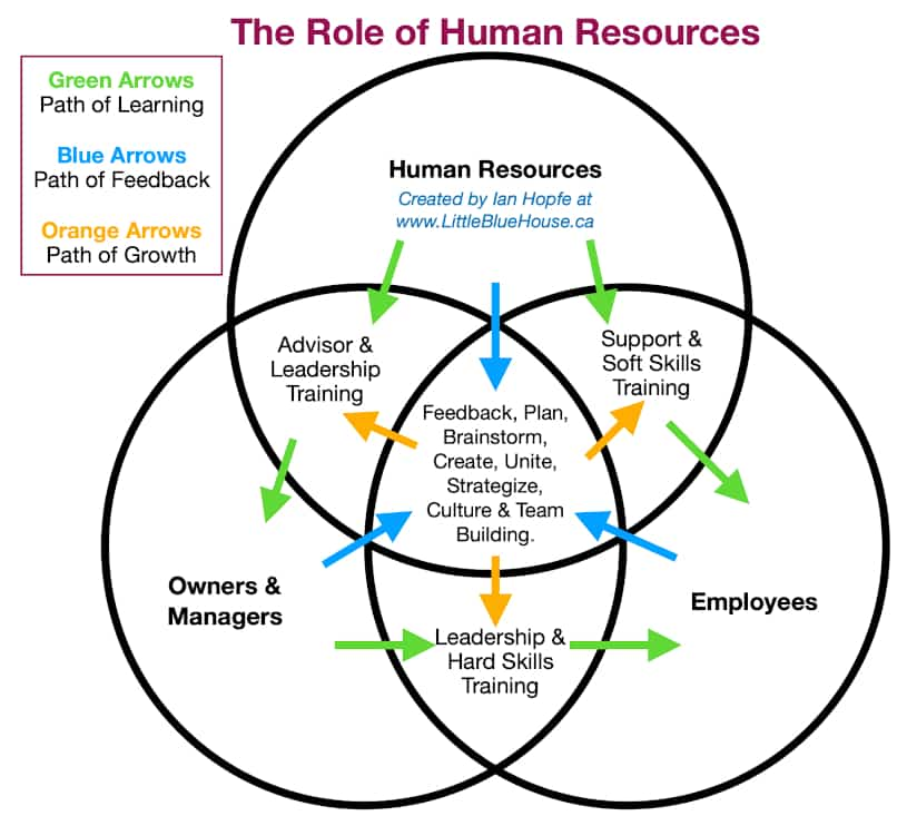 The Role of Human Resources Diagram
